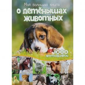 """""""Таблица умножения в стихах"""" и 1000 фотографий детенышей животных"""
