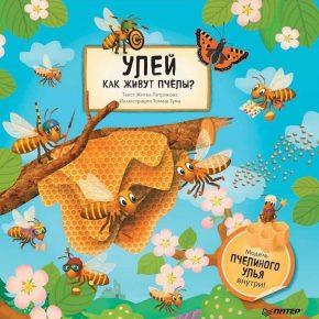 """""""Улей. Как живут пчелы? (Модель пчелиного улья внутри)"""""""